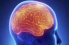 Image result for दिमाग को दस गुना तेज