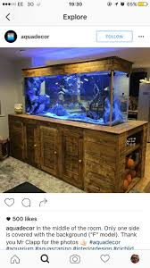 Aquascaping, Fish Tanks, Fishing, Aquariums, Aquarium, Pisces