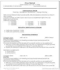 Resume Of Cfo Resumes Cfo Resume Sample Doc – Orgizmo.me