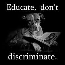 Discrimination Quotes Simple Discrimination Quote Quote Number 48 Picture Quotes