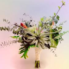 Floral Design Kansas City Tillandsia Tropical Botanical Floral Design Kansas City