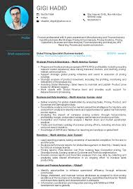 Resume Examples By Real People Honeywell Pricing Analyst Resume