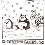 Marjolein Dijkstra Dijkstra0633 On Pinterest