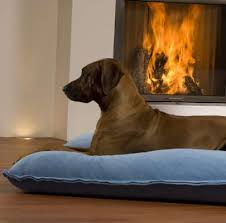 big dog furniture. Big Dog Pillow By Pet Interiors Dog-furniture Furniture I