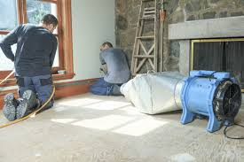 rug cleaning near springfield il
