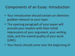 components of an essay co components
