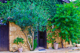 photography the greek art of doors mallory on travel wineries are often so beautiful mercouri vineyard near olympia in on mallory on travel
