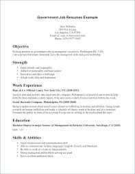 Resume Objectives Examples Resume Objective Examples For Government