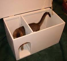 Image Jumbo Designer Catbox Litter Box Enclosure In White Foter Decorative Litter Box Enclosures Ideas On Foter