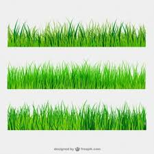 green grass field animated. Green Grass Borders Field Animated \