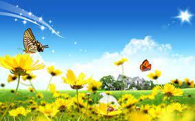 hd-wallpaper-beautiful-flowers ...