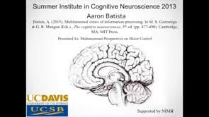"""Videos in """"2013 Summer Institute in Cognitive Neuroscience"""" on Vimeo"""