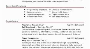 Computer Programmer Resume Example Free Download