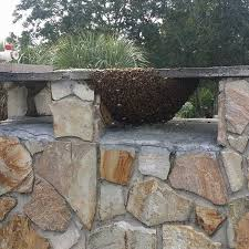bee hive in fireplace