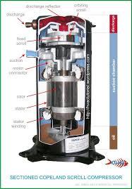 copeland compressor wiring diagram solidfonts copeland compressor wiring diagram nilza net