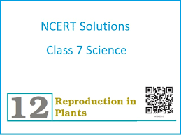 ncert solutions for cl 7 science