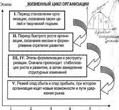 Закон самосохранения в организации курсовая закачать Закон самосохранения в организации курсовая