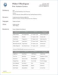 Standard Resume Format – Igniteresumes.com