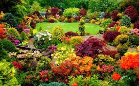 garden flowers. Garden Trees Flowers I