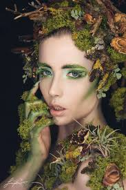 nature makeup tree topsimages
