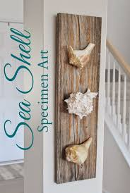 Seashell Bedroom Decor 1000 Ideas About Sea Shells Decor On Pinterest Seashell Art