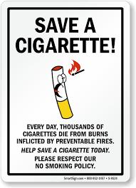 smoking ban essay help smoking ban essay help political socialization essay