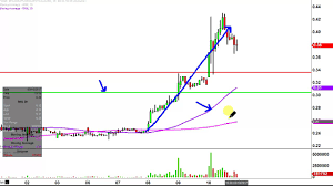 Rnn Stock Chart Rexahn Pharmaceuticals Inc Rnn Stock Chart Technical Analysis For 03 10 17