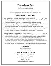 Professional Nursing Resume Resume Badak