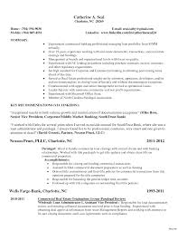 Resume Templates Real Estate Examples Manager Sample Commercial