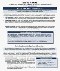 Cio Resume Sample Simple Fantastisch Information Technology