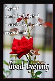 Good Evening Gif Images Beautiful Good Evening Wallpapers Gif Beauteous Beautiful Madam In Beautiful Garden Quotes