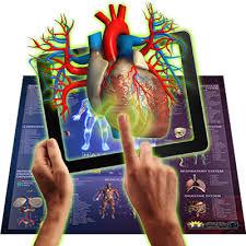 Human Anatomy Small Smart Chart