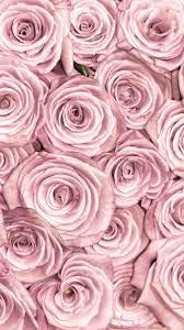 Rose gold wallpaper iphone ...