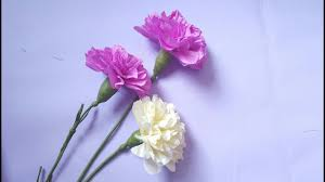 Paper Carnation Flower Crepe Paper Flowers How To Make Paper Carnations Flowers From Crepe