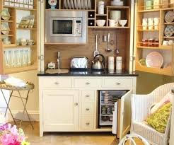 kitchen pantry shelves ideas storage units additions conners small cabinets cabinet organizing amusing pantr