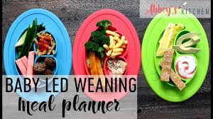Easy Baby Led Weaning Meal Planner For Babies Toddlers Breakfast Lunch Dinner Menu