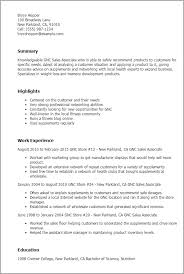 Retail Sales Associate Resume Mesmerizing Retail Sales Associate Resume Lovely Sales Associate Resume