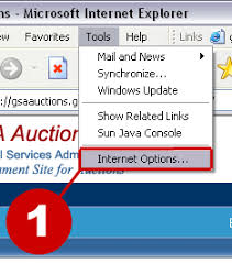 how to enable javascript how to enable javascript in ie 5 x or 6 x