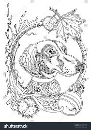 Dachshund Autumn Elements Coloring Page Adults Stock Vector Royalty