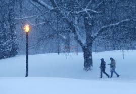 Albany Lights In The Park Walk People Walk Through A Cold And Snowy Washington Park On