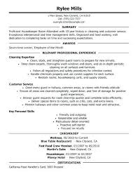 Personal Statement For A Cv Personal Statement For Resume Examples Personal Resume Samples