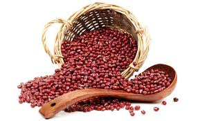 Image result for kacang merah