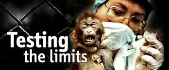 pros and cons medicinal animal experimentation pointless  cons of animal testing