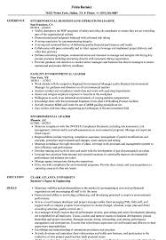 Group Leader Resume Example Environmental Leader Resume Samples Velvet Jobs 35