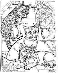 Small Picture Cool Coloring Pages For Adults 34 Cool Coloring Pages Cool