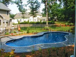 Pool Fence Designs Photos Garden Design Pools Storage Fence Pictures Noodle Spaces