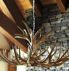 real antler chandelier real antler chandelier real antler chandelier superb lamps 9 antler chandelier for real antler chandelier reion