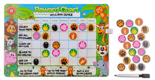 Chart Jungle Educational Colours Magnetic Reward Chart Jungle
