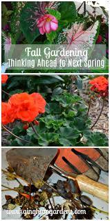 2016 Fall Gardening ExteriorInterior Trends And Nature  SBu0026R BlogFall Gardening