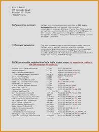 Resume Sap Mm Support Consultant Resume Auto Sales Consultant